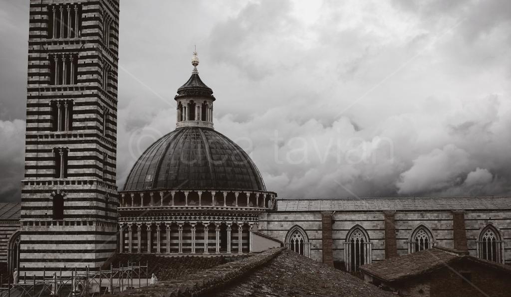 Cupola_Torre_Duomo_di_Siena