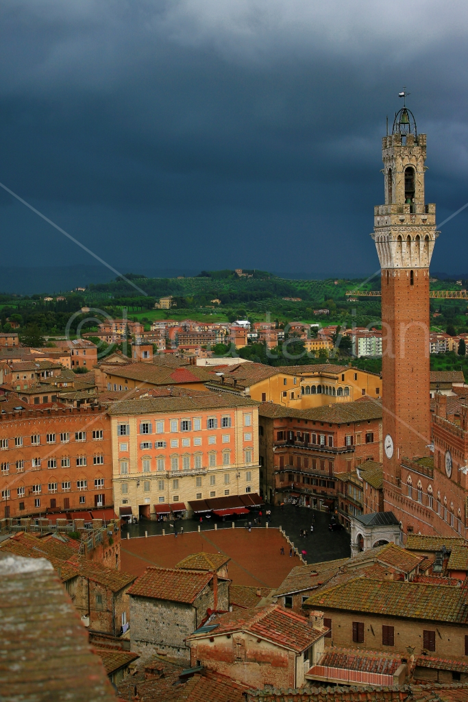 Piazza_del_Campo_Siena