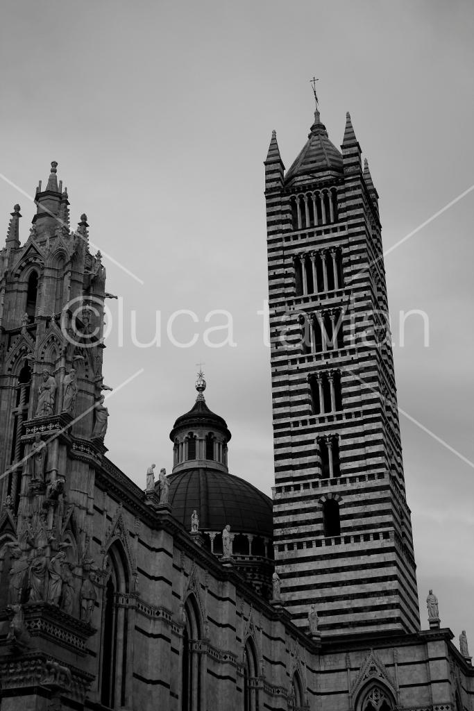 Torre_Duomo_di_Siena