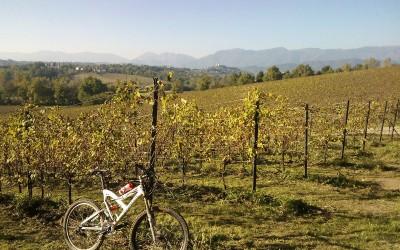 Nuova traccia gps percorso d'allenamento in mountain bike Conegliano